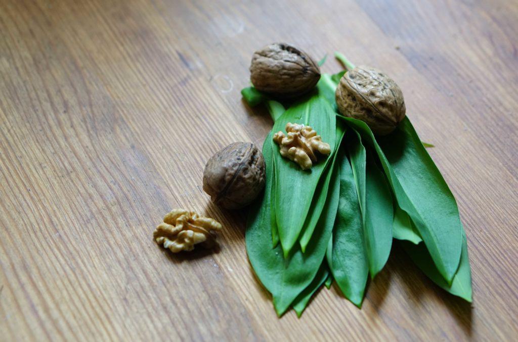 Zutaten für die Bärlauch - Rezepte